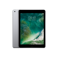 iPad 32 GB in Space Grau